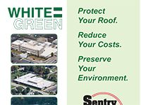 White = Green Brochure